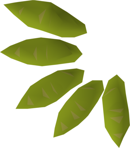 File:Willow seed detail.png