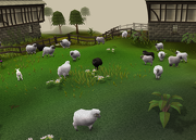 180px-Sheep pen