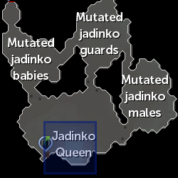 Jadinko Queen location