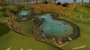 Tree Gnome Stronghold swamp