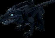 Baby black dragon (NPC)