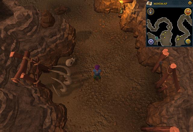 File:Scan clue Fremennik Slayer Dungeon north of basilisk chamber.png