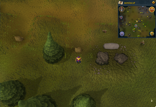 File:Scan clue Piscatoris Hunter area north of fairy ring.png