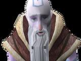 Fremennik Sagas