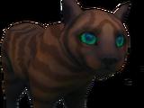 Cats of Menaphos