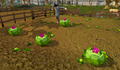 Cabbages with partyhats.png