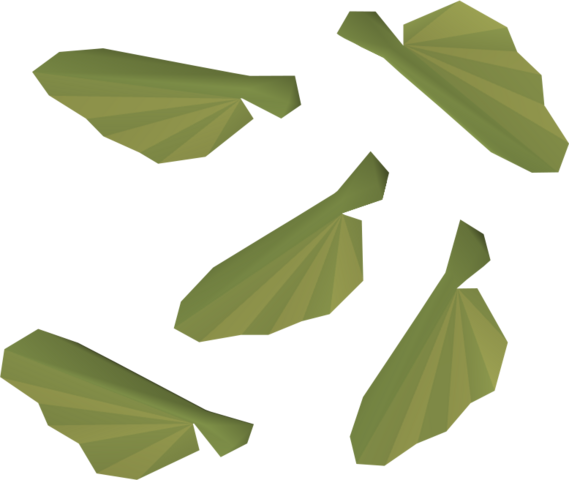 File:Maple seed detail.png