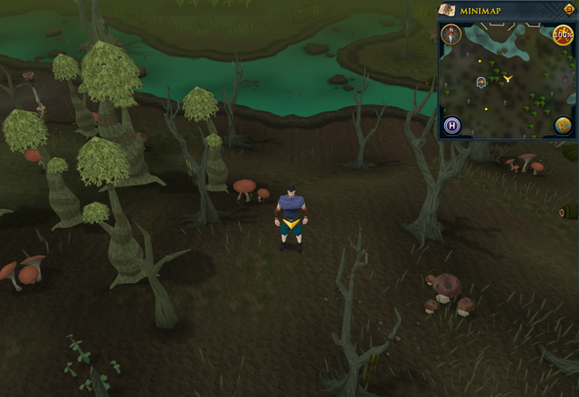 File:Scan clue Haunted Woods east of fairy ring.png
