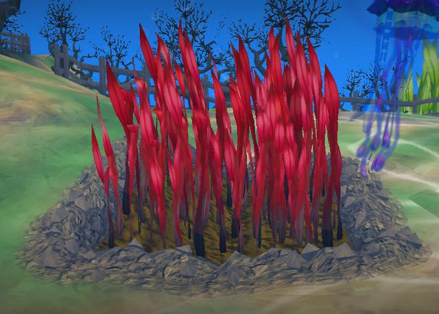 File:Tasty looking seaweed.png