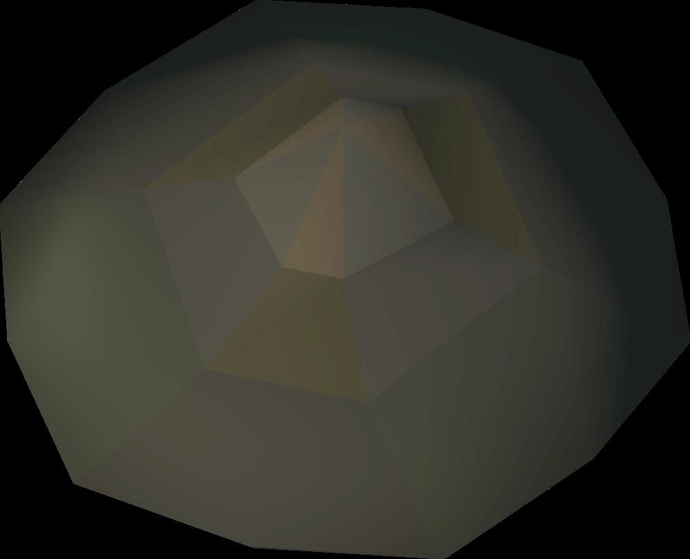 Tortoise Shell Runescape Wiki Fandom Powered By Wikia