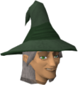 Wizard Acantha chathead.png