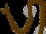 Cave eel