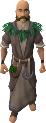 Druid (Battle of Lumbridge)