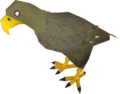 Jungle eagle.png