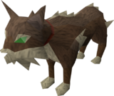 Meiyerditch cat