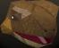 Reptile chathead