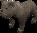 Bulldog (grey) pet.png