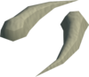 Sabre-like teeth detail