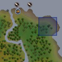 Gecko (green) location