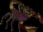 Poison Scorpion old