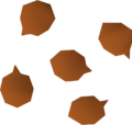 Barberry seed detail.png