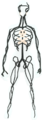 Death ethereal outfit equipped.png