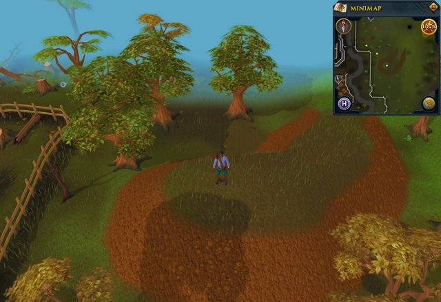 File:Compass clue Digsite south-east of bright wisp colony.png
