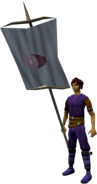 Banner (HAM) equipped