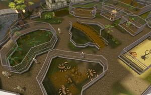 Ardougne zoo