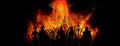 Bonfires Banner.png