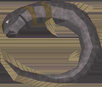 Burnt short-finned eel detail