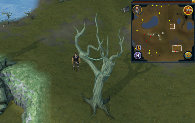 File:Compass clue Lumbridge east of water altar.png