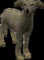 Greyhound (grey) pet.png