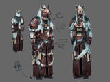 Shaman's outfit