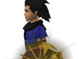 Solarius shield
