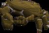 Baby giant crab (brown) pet