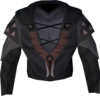 Darkmeyer torso detail