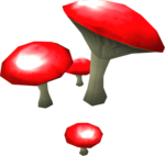 Bloodcap Mushrooms