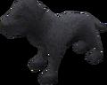 Labrador puppy (black) pet.png