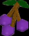 Lergberries detail