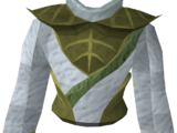 Third-age druidic robe top