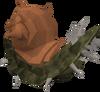 Bark blamish snail
