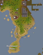 Mudskipper point