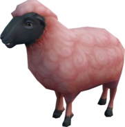 Summerdown ewe (NPC)