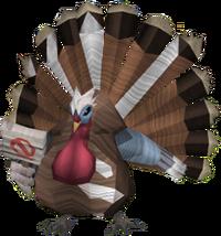Matt the turkey protester