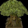 Spirit tree12.png