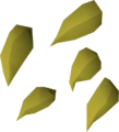Argway seed detail.png