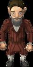 Gnome traveller 1