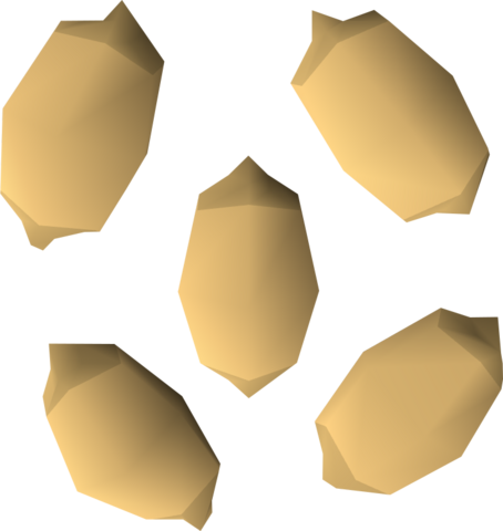 File:Palm tree seed detail.png