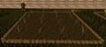 Reeds1.png